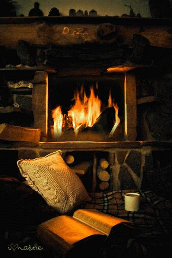 Can I Burn Fireplace Today by 30 Amazing Animated Gif Images Best Animations