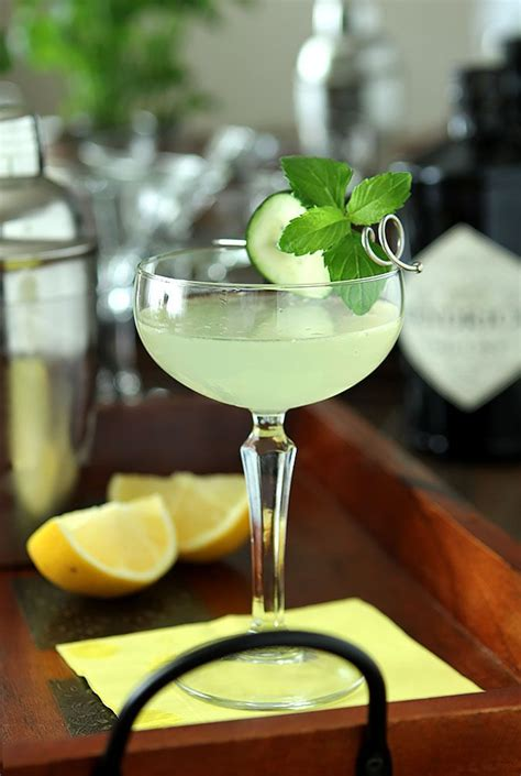 classic summer cocktails 25 best ideas about hendrick s gin on