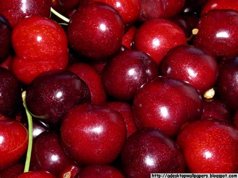 with cherry cherry cherries fruit desktop wallpapers