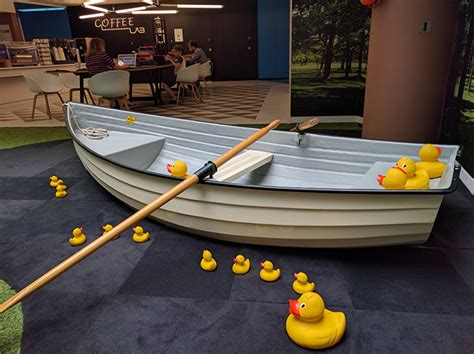 row boat uk google uk has a row boat indoors with rubber ducks around it