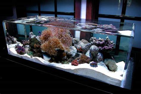 aquarium for home decoration the 1 million aquarium customized fish tanks as home