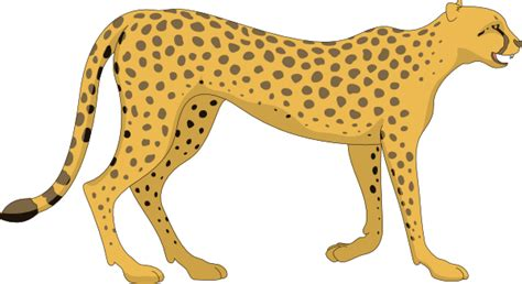 cheetah clipart walking cheetah clip at clker vector clip