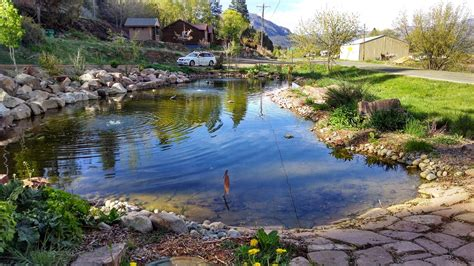large backyard pond image gallery large backyard pond designs
