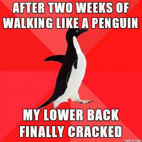 Back Problems Meme - image result for back pain meme with flowers funny back