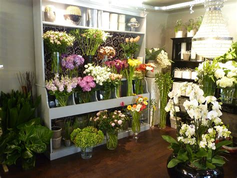 Design Garden la boutique vanda fleur fleuriste 224 64 anglet