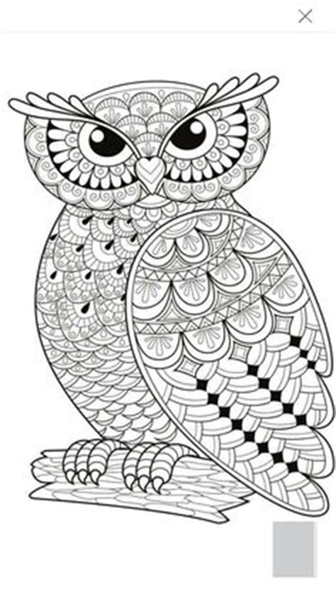 owl heart coloring page pinterest the world s catalog of ideas
