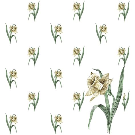 daffodil paper flower pattern 47 best images about daffodils on pinterest