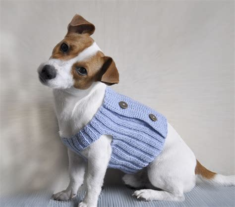 knitting pattern puppy jumper knitting pattern dog sweater pattern knit dog sweater
