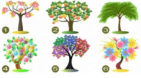 test dell albero test dell albero scegline uno e scopri la tua vera