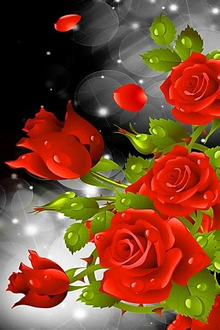 wallpaper android rose red rose party live wallpaper free android app android