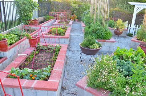 Kitchen Garden Ideas Home Garden Ideas India Container Gardening Ideas