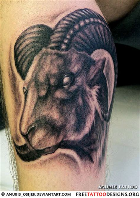 goat tattoo designs 35 aries tattoos ram designs