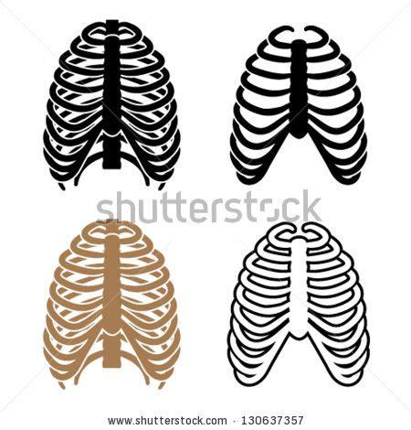 ribs clipart rib cage clipart clipground