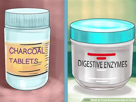 what to give dogs for gas how to treat excessive gas in dogs 11 steps with pictures