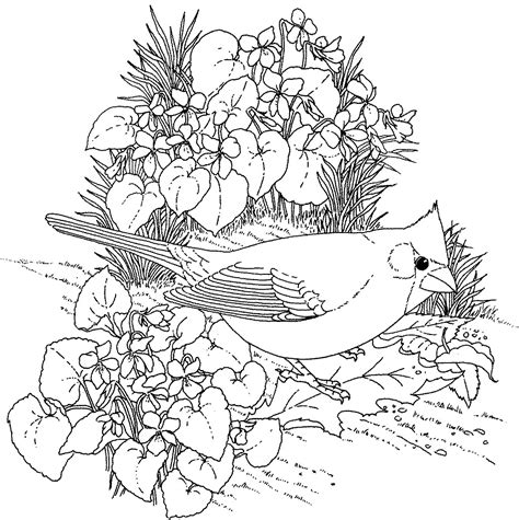 coloring pages of lots of flowers terrific colors worksheets for preschoolers free