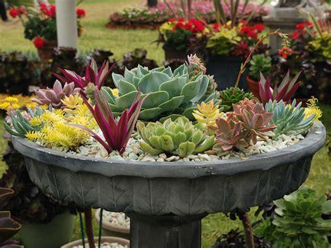 Massif De Fleurs Avec Galets by La D 233 Co De Jardin Originale Et Pratique Parterre De