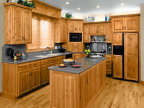 Cabinet For Kitchen Kitchen Cabinet Ideas How To Buy Kitchen Cabinets