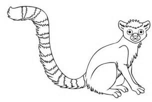 ring tailed lemur coloring color luna