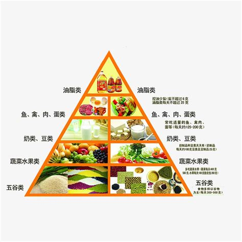 piramide alimentare cinese nutrition diet pyramid food pyramid