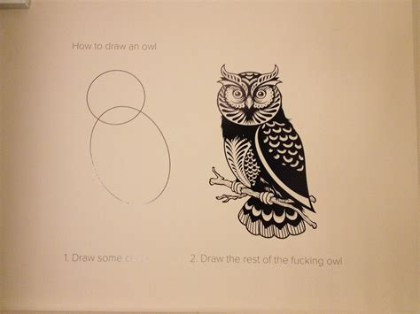 How To Draw An Owl Meme - image 572090 how to draw an owl know your meme