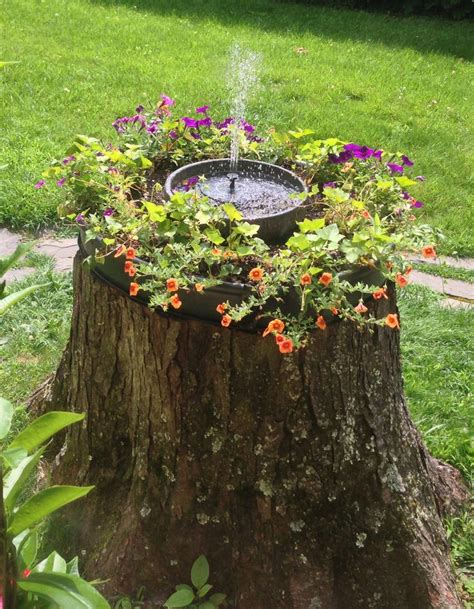 what to water your tree with pin by janice nusser on landscaping flowers