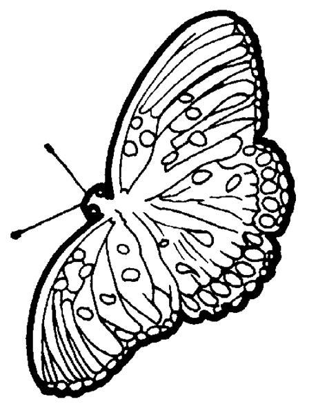 Papillon 08 Gif Dessin Papillon 224 Colorier Mes
