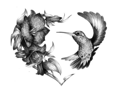 black and white hummingbird tattoo designs hummingbird and flower tattoos black and white copihue