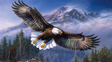 Wonderful Church Topics #6: Beautiful-background-bald-eagle-in-flight-wings-spread-hd-wallpapers-for-mobile-phones-and-laptops-915x515.jpg