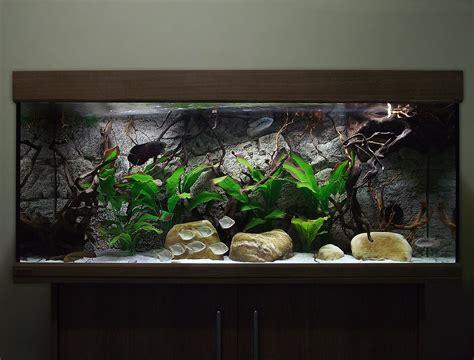 aquarium for home decoration 100 aquarium for home decoration