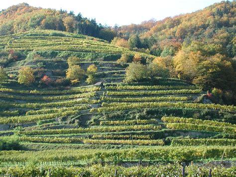 terrasse in terrasse landwirtschaft