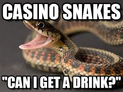 Snake Meme - casino snakes snake meme on memegen