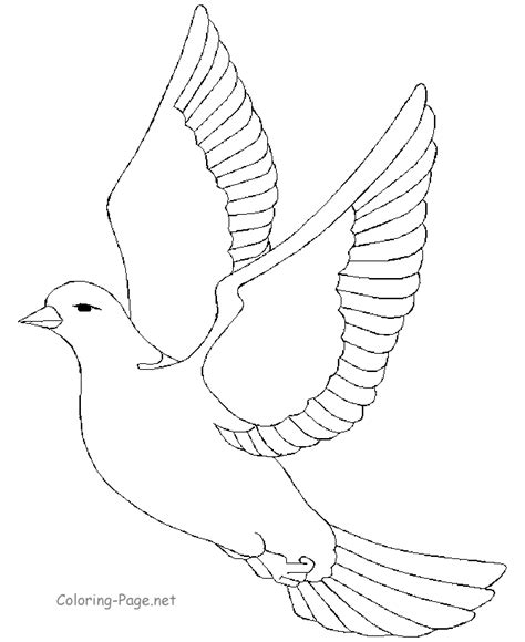 free coloring pages of birds in flight sketches of birds in flight coloring pages