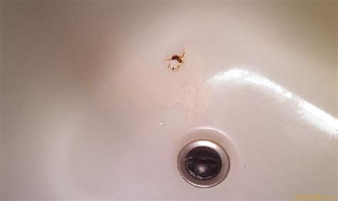 how to fix a hole in the bathtub fix those holes in the bathtub tukee talk