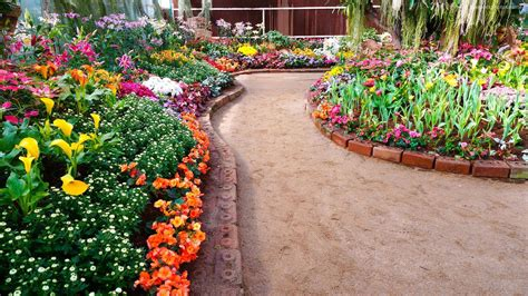 Stock Photos Of Beautiful Flower Garden At Home Images Photo Of Beautiful Flower Gardens