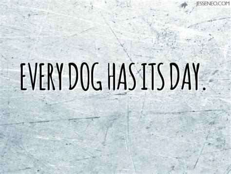 every dogs day every has its day neo