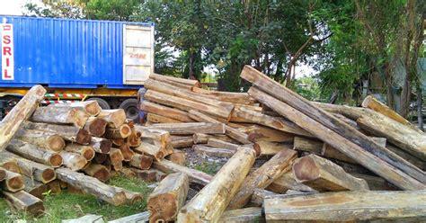 Papan Kayu Besi Ulin Sulawesi 200x10x5 kayu jati sulawesi jual kayu jati kusen pintu jati harga kayu jati