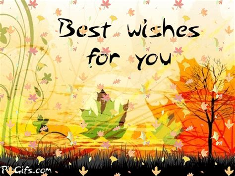 best wishes for you best wishes for you graphic animated gif animaatjes best
