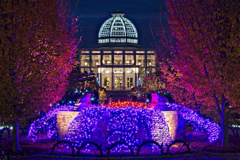 Botanical Gardens Garden Of Lights An Evening Quot Entwined Quot With Nature Lewis Ginter Botanical Garden