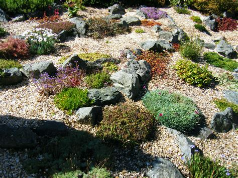 transforming a bluebell zone into a rock garden the