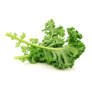 protein kale top 10 vegetables high in protein