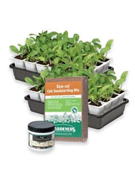 Gardeners Supply Tomato Success Kit 1000 Images About Tomato Seed Starting Kits On