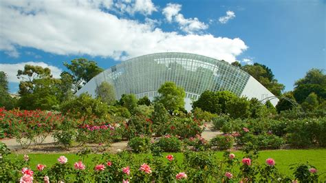 Adelaide Botanic Gardens Adelaide Botanic Gardens Adelaide Tourism Media