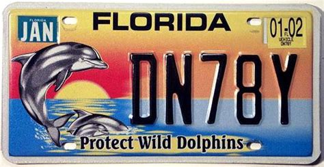 Vanity Plates Florida by Florida Y2k