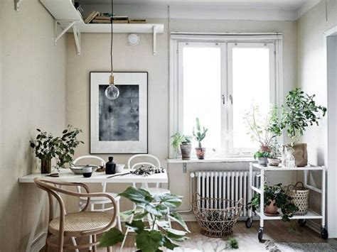 the studio m designs blog styling essentials plants a studio apartment brimming with greenery