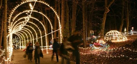 lighting stores greenville sc roper mountain holiday lights 402 roper mountain road