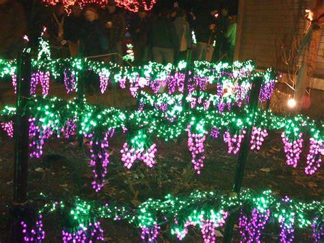 Botanical Gardens Light Show Bellevue Botanical Garden Light Show
