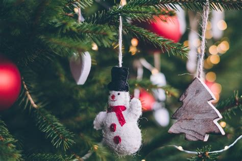 environmentally friendly christmas trees 5 eco friendly ways to recycle your tree