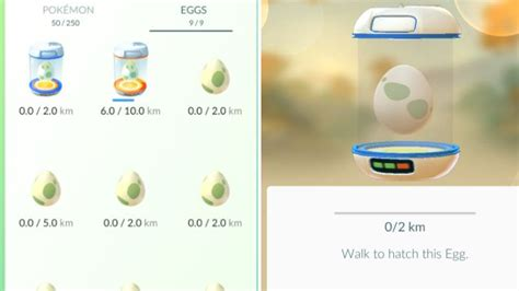 reset walka online get ahead in pokemon go with these tips