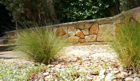 pflegeleichte gartenpflanzen pflegeleichte gartenpflanzen f 252 r den sommer