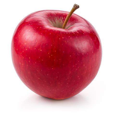 Apple Tempat Bumbu Unik Bumbu Apple Buah Apel Wp ikuti tips membersihkan dan memanfaatkan buah apel yang hir busuk